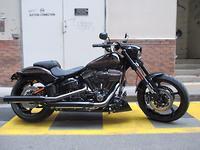 2016 Harley-Davidson CVO Pro Street Breakout (FXSE)